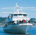Ocean excursions out of Newport, great fun for the whole family